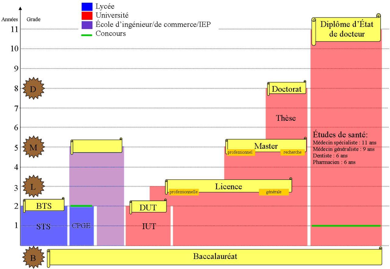 Образование во Франции школы колледжи и университеты обучение  система образования во франции